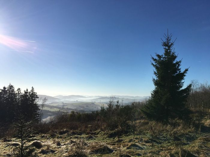 Pure Nature Pure Beauty Nature Nature_collection View Tree Sky Fog Sun Sunlight Nature Mountain Landscape No People Winter Sauerland Cold Temperature Forest Outdoors Sunrays