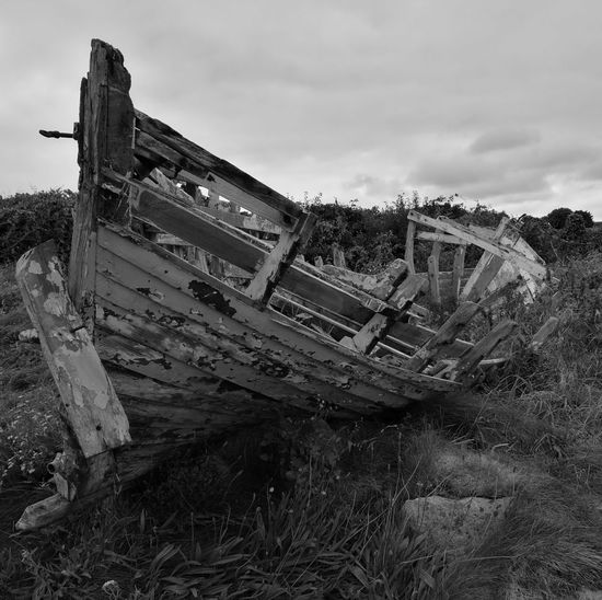 Death by land Boat Rotting Wood Death & Decay