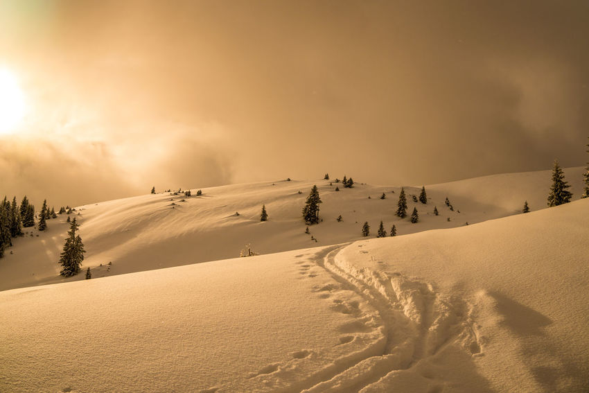 Lonesome Silence Clouds Clouds And Sky Skitour Way Snowway Nature Landscape Cloud - Sky Outdoors No People Sunset Sky Winter Day Cold Temperature Hill Forest Snow Scenics Tree Fog