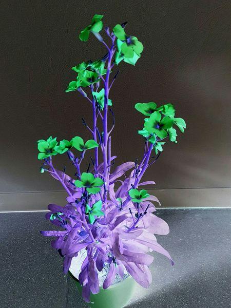 Flower Power Beauty Filterfun