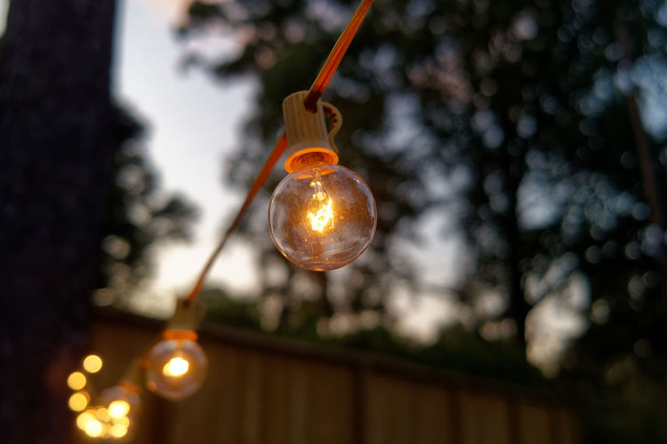 Bulb Dusk Electricity  Focus On Foreground Hanging Hanging Lights Illuminated Incandescent Incandescent Bulbs Light Bulb Light Strands Lighting Equipment Outdoors Twinkle Light Twinkley