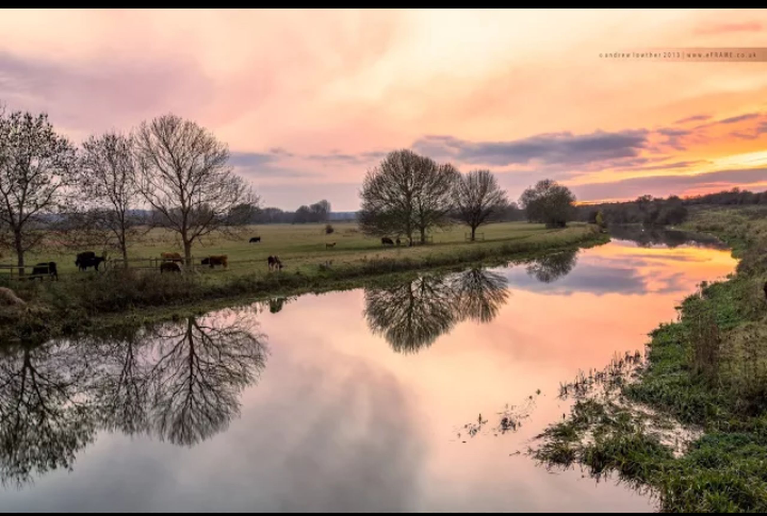 reflection, tranquil scene, sunset, sky, tranquility, scenics, lake, tree, water, beauty in nature, cloud - sky, nature, landscape, idyllic, cloudy, cloud, grass, standing water, waterfront, non-urban scene