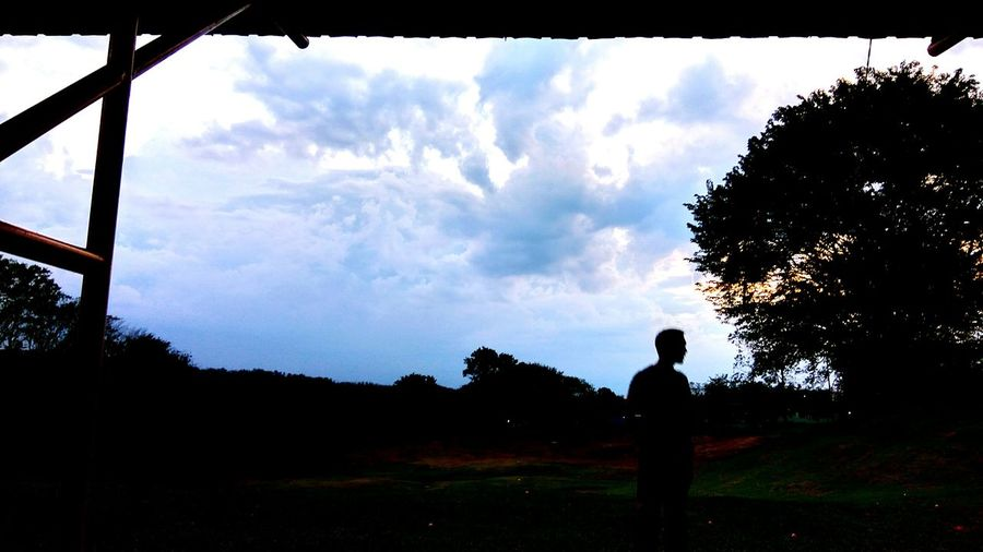 Standing Grass Landscape Leisure Activity Golf Sunset Tree Standing Rear View Leisure Activity Landscape Grass Field Tranquil Scene Tranquility Lifestyles Sun Scenics Sky Sunbeam Nature Park - Man Made Space Cloud - Sky Beauty In Nature Getting Away From It All First Eyeem Photo