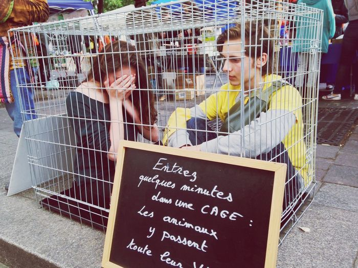 Animals Vegan Cage Best Burger In Town On A Diet Paris Animalrights Streetphotography Colors Crying