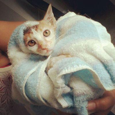 cian Boboi sejuk sejuk kena mandi ngn mummy @ainie