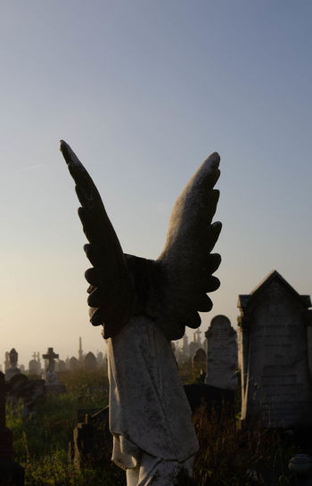 Cemetery Photography Graveyard Collection Angel Animal Animal Representation Animal Themes Architecture Arms Raised Art And Craft Bird Building Exterior Built Structure Clear Sky Craft Creativity Light And Shadow Nature No People Outdoors Representation Sculpture Sky Statue Sunset Vertebrate