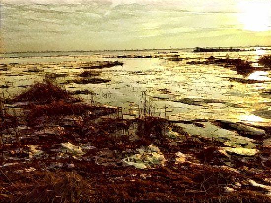 051/365 Prisma 006 IPhoneography Iphone6 Bilsbekblog Eyeemgermany Photo365 Sorcerer86 Photooftheday Eyeemhetlingen