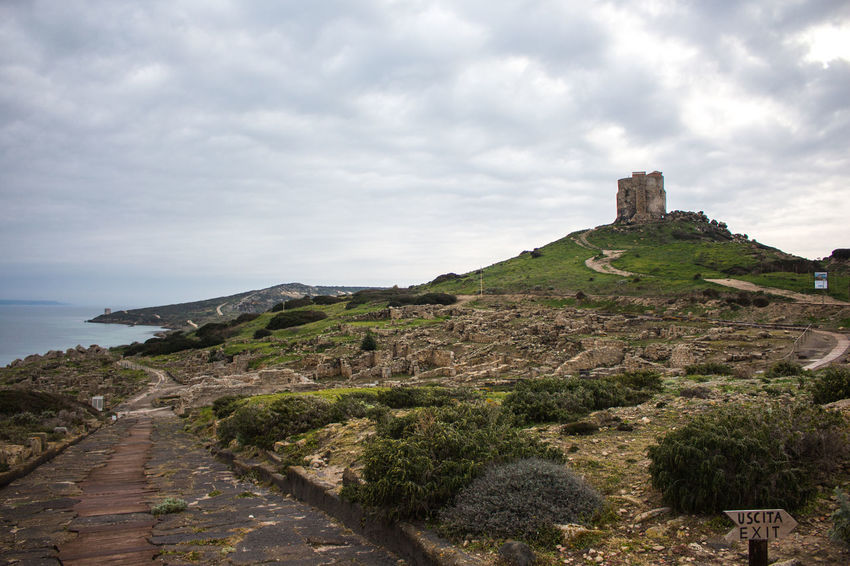 Tharros view Tharros Ancient Ancient Civilization Ancient Architecture History Tower Cabras Sardegna Sardinia Travel Destinations History Cloud - Sky Architecture Outdoors Day Building Exterior Nature Beauty In Nature Ancient Civilization Sky No People