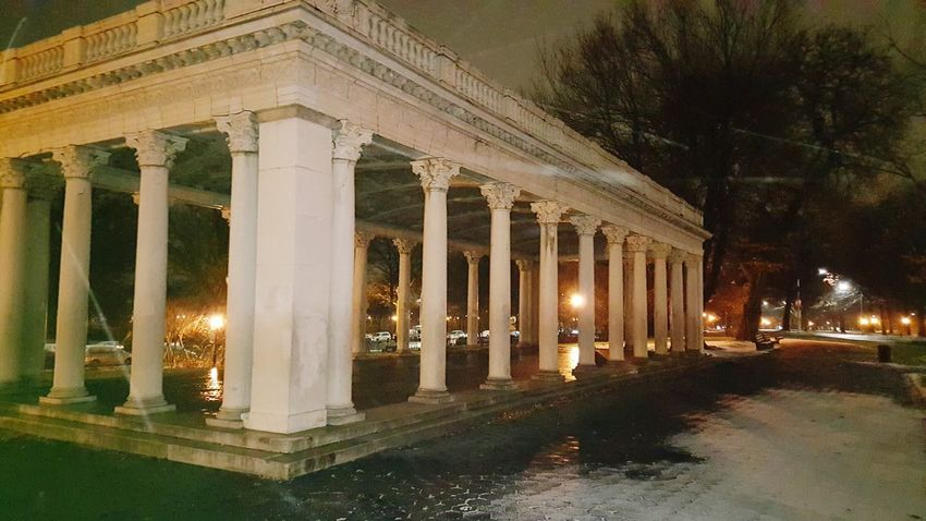 Architectural Column Illuminated Tree Architecture City Built Structure No People Sky Outdoors Prospect Park Brooklyn Park Snow Snowing Nightphotography Night Snow On Ground