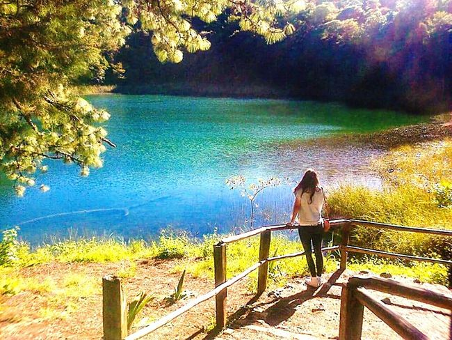 Love yourself... Water Tree Nature Beauty In Nature One Person Day Lake Allgreen Beautiful View
