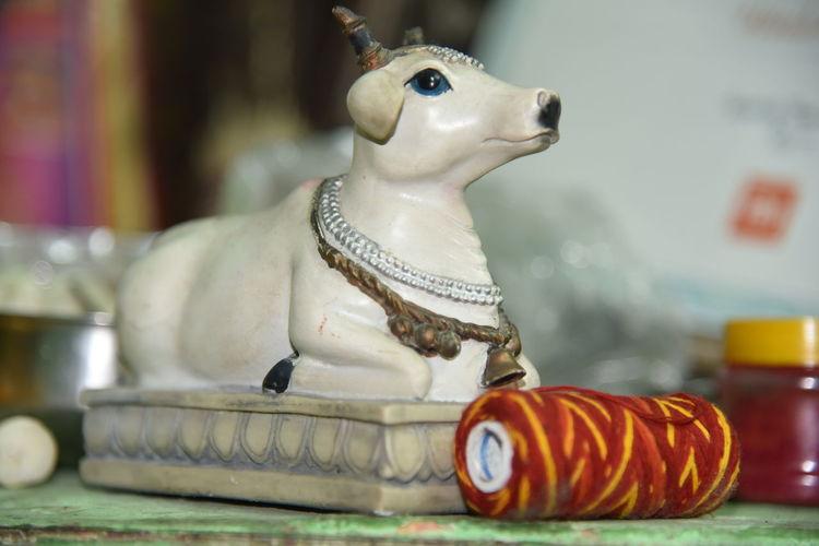 EyeEm Selects Indoors  Nandi Bull, Shivji Om Namah Shivaye , Nanadi Bail