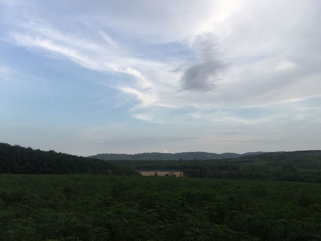 The Purist (no Edit, No Filter) Simplicity Landscape Field Beauty In Nature Sky Nature No People Cloud - Sky Tranquil Scene Scenics Tranquility Tree Day Outdoors Mountain