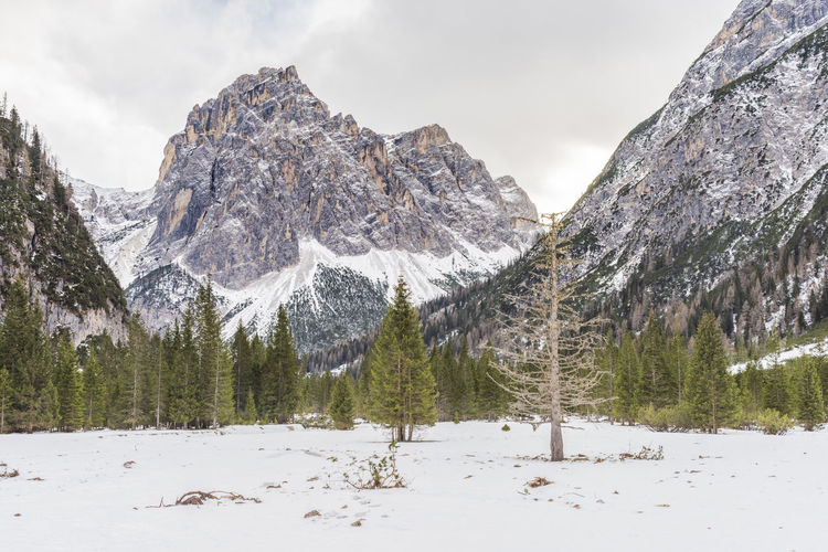 Dolomites. Winter between ice and snow. Tre Scarperi Refuge. On the way to the Tre Cime di Lavaredo Snow Cold Temperature Winter Nature Beauty In Nature Scenics - Nature No People Panorama Peak Nature Lake Ice Heritage UNESCO World Heritage Site Dolomites, Italy Refuge Climbing Church Alpine Landscape Italy Mountain Landscape Clouds And Sky Lavaredo Winter Ice