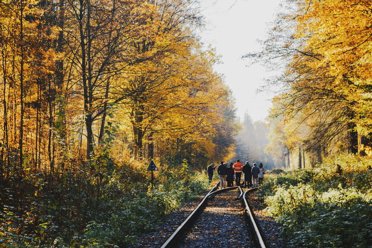 Rear view of people walking amidst trees on railroad track during autumn