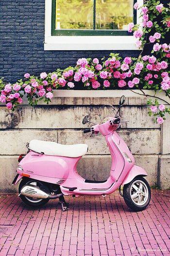 Pink Rose Motorbike Vintage Vintage Cars Vintage Photo Pink