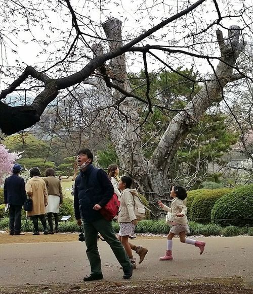 Wonderment Shinjuku Gyoen National Garden Children Running Street Photography Cherry Blossoms 桜花 Sakura Spring 2015 Tokyo, Japan Travel Photography