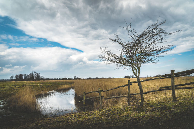 Barrier Beauty In Nature Boundary Cloud - Sky Environment Fence Field Grass Landscape Nature No People Non-urban Scene Outdoors Plant Scenics - Nature Sky Tranquil Scene Tranquility Tree Water