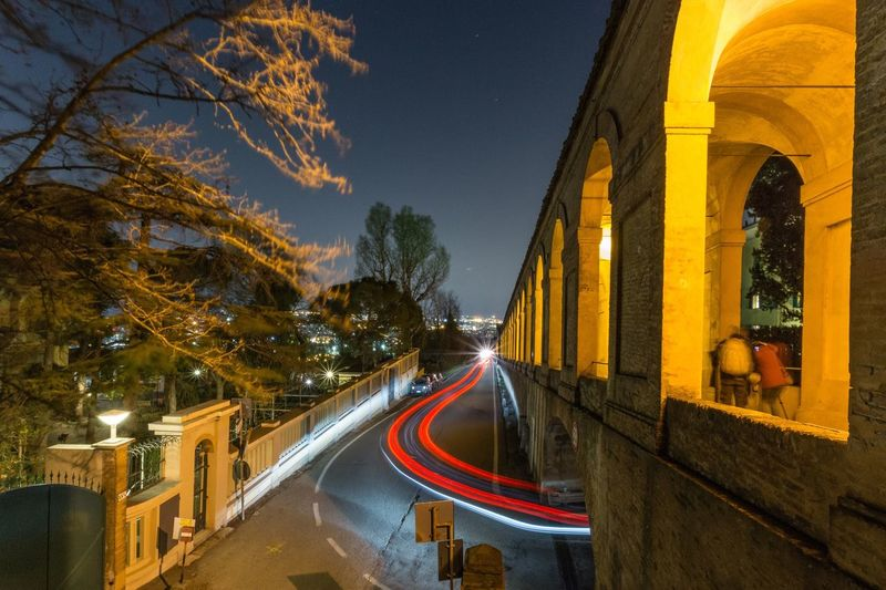 Luci a San Luca Tree Illuminated Plant Architecture Night Transportation Road Connection The Way Forward No People Street Light Trail City Yellow Built Structure Direction Building Exterior Nature Dusk Motion