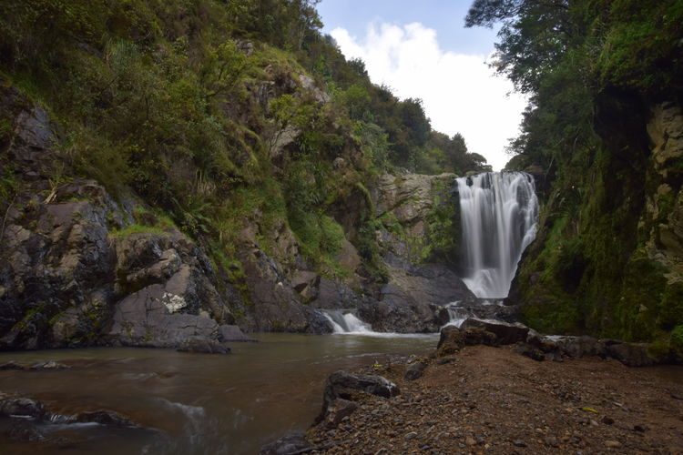 Newzealand Nzmustdo Northland Travel Chasing Waterfalls LoveNature Water Waterfall Power In Nature Beauty Motion Long Exposure Forest River Environment Falling Water