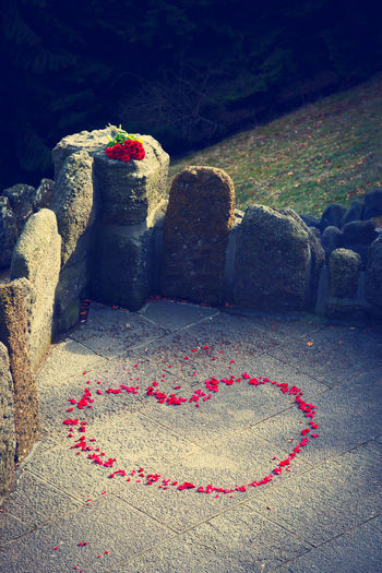 No People Nature Emotion Day Heart Shape Positive Emotion Plant Love Outdoors Stone Flower Red Rock Flowering Plant Creativity Footpath Sunlight Valentine's Day - Holiday Roses Rose Petals Love ♥ Wedding Declaration Of Love Romantic❤ In Love