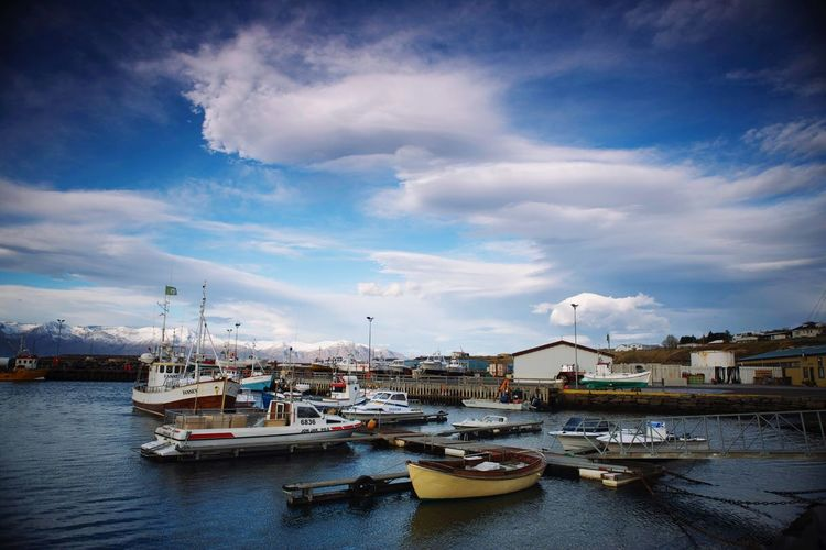 Iceland Whale Watching Boats Harbor View