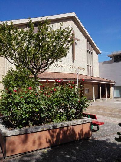 Parroquia de la Asunción Pamplona, Edificios Públicos, Navarra, Spain, Es