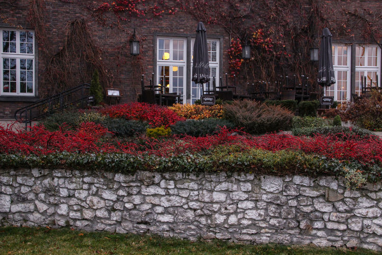Red Color Paints Windows Lamp Orange Color Paints Of Autumn Autumn All Paints Of Autumn