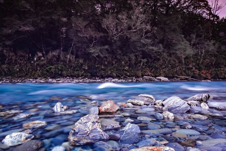 Beauty In Nature Day Flowing Water Land Nature No People Outdoors Pebble Plant Rock Rock - Object Scenics - Nature Sea Solid Tranquil Scene Tranquility Tree Water