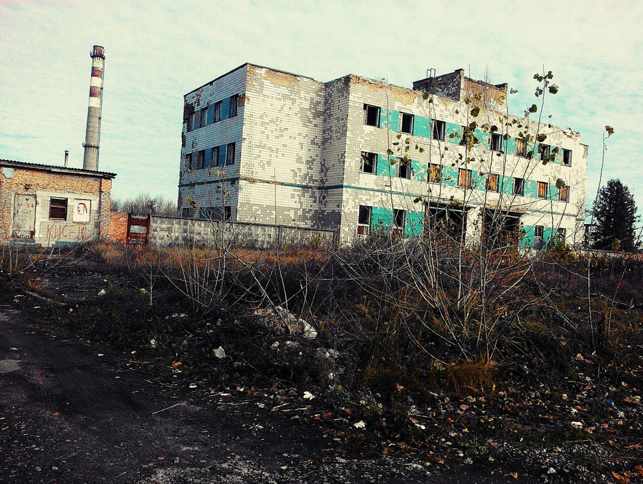 architecture, building exterior, built structure, abandoned, damaged, house, sky, no people, outdoors, day, plant, desolate, tree, grass