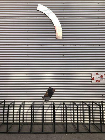 Bird on railing against brick wall