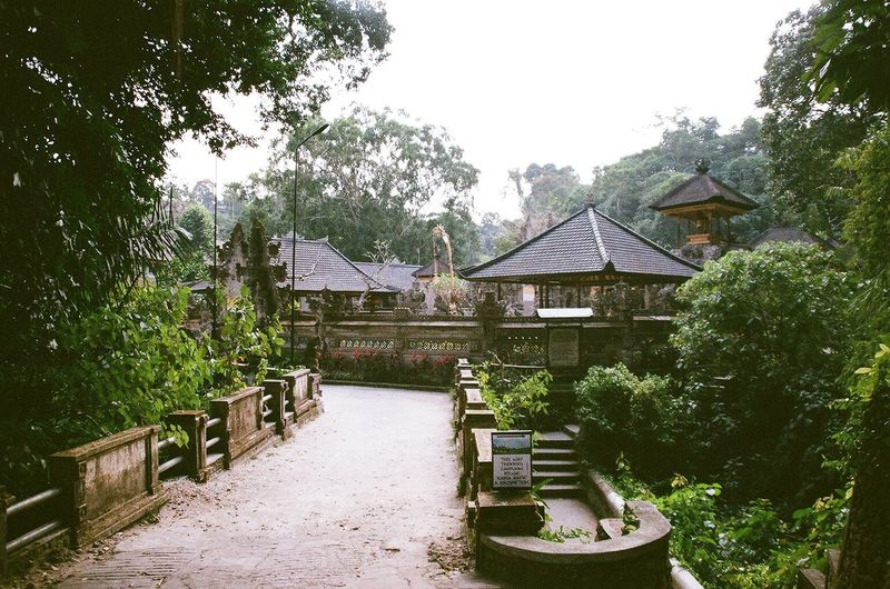 Parahyangan Jagat Payogan Agung Gunung Lebah. Ubud, Bali. Altough almost hidden by the trees, This Hindu Temple stand out beautifuly between the tranquility of woods and river. 35mm Film Analogue Photography Bali Bridge CampuhanRidge EyeEm Best Shots Film Photography Filmisnotdead Forest Hidden Gems  Hindu INDONESIA Kodak Nikon Nikon Photography Outdoors Temple Tjampuhan Tranquility Tranquility Travel Trees Woods Camp