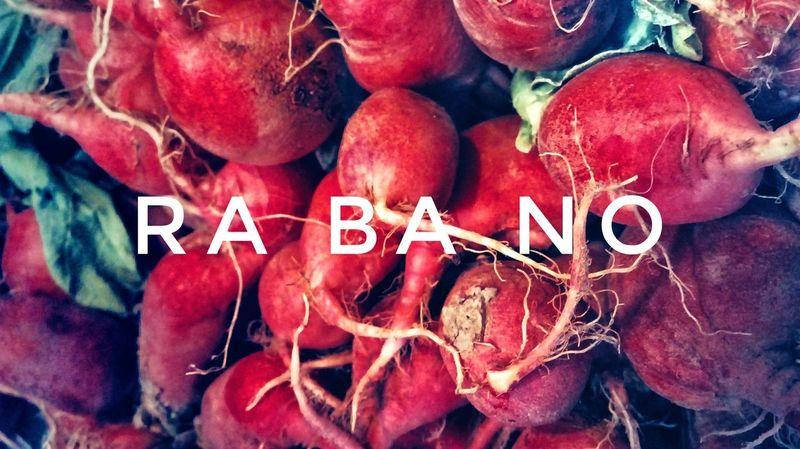 Rabano Rabano Color Red Red Color Raiz