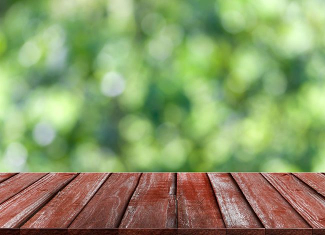 Beauty In Nature Bench Brown Close-up Day Focus On Foreground Green Color Nature No People Outdoors Park Park Bench Pattern Plank Plant Roof Seat Sunlight Tree Wood Wood - Material