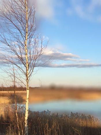 Nature Naturelovers Sky Springtime Water