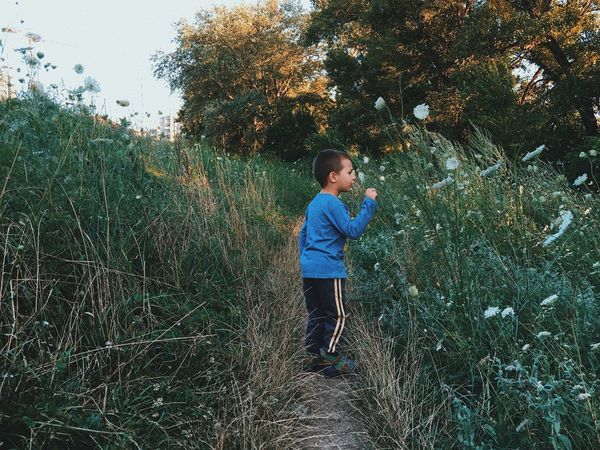 Discovering the nature... Boys Childhood Growth Casual Clothing Real People Full Length Standing Tree Plant Leisure Activity One Person Nature Day Lifestyles Grass Outdoors One Boy Only Made In Romania Details Of My Life Kids Being Kids VSCO Child Kid My Favorite Photo Beauty In Nature
