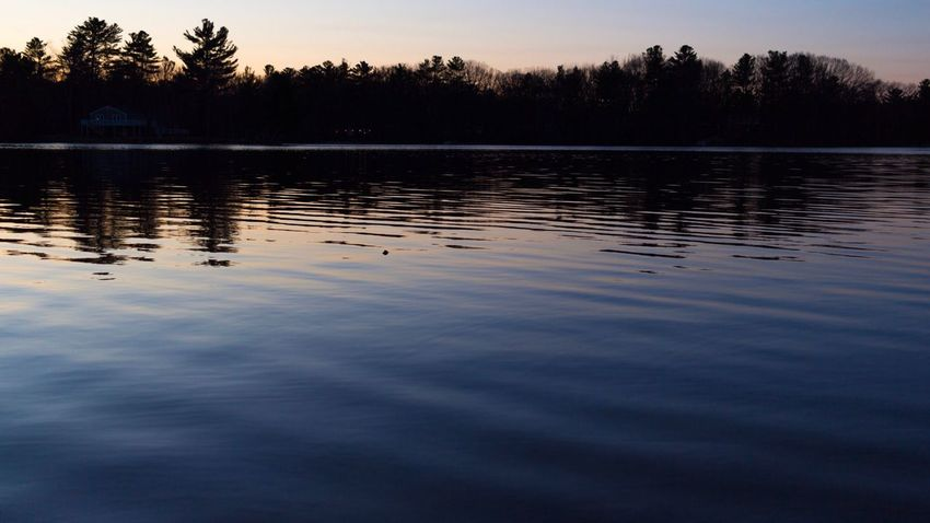 Scenics Lake Water Reflection Tree Sunset Nature Tranquility Beauty In Nature Outdoors No People Waterfront Sky Day Perspectives On Nature