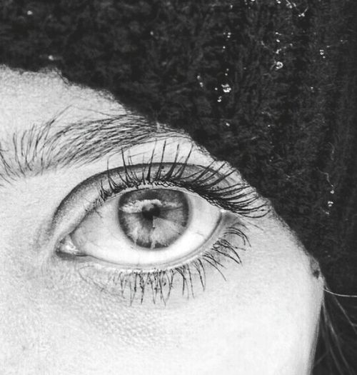 Human Eye Looking At Camera Eyelash Close-up One Person Macro Portrait Blue Extreme Close-up Eyebrow Sensory Perception Eyeball Real People Blue Eyes Eyesight Human Body Part Eyeshadow Lifestyles Women Iris - Eye