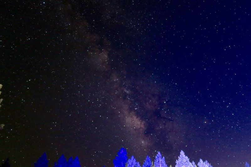 Mountaintop in California July 2017. A Filmcrew around the Corner worked with Blue Light, that gives the Trees the Colour. Star - Space Astronomy Night Galaxy Low Angle View Nature Beauty In Nature No People Star Field Space Tranquility Scenics Starry Constellation Blue Space Exploration Sky Outdoors Milky Way
