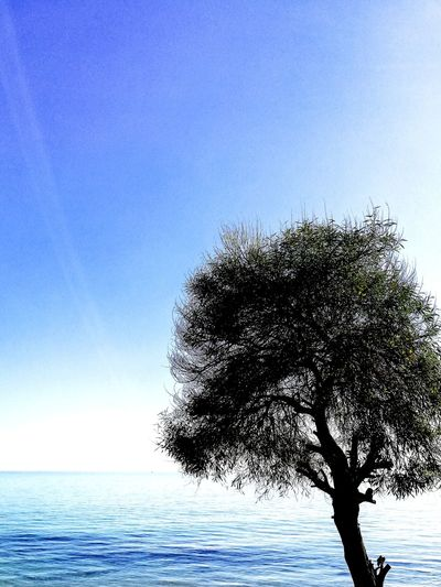 Sea Sky Nature No People Outdoors Water Tree Blue Pixelated Day Horizon Over Water