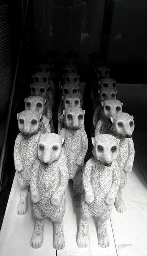 In A Row Meerkat Still Life Terracotta Army