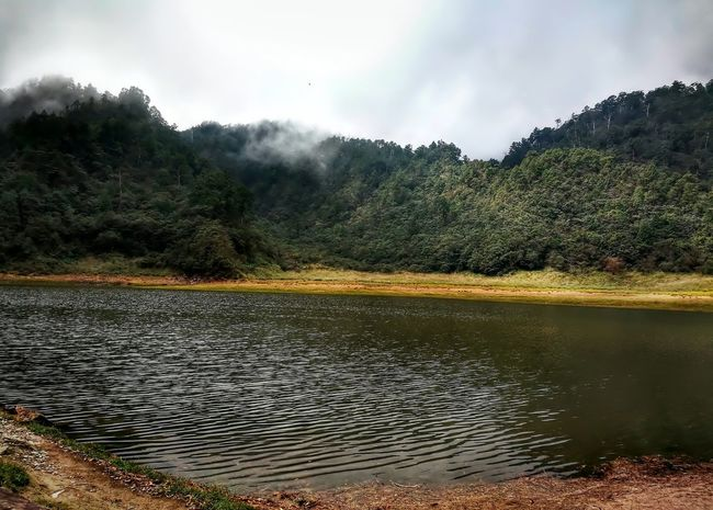 Water No People Cloud - Sky Nature Pinaceae Tree Outdoors Lake Scenics Landscape Day Mountain Sky