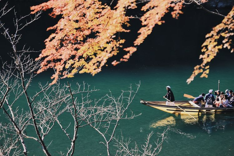 Autumn Autumn colors Autumn Leaves Japanese Culture Autumn Colours Branch Day Group Of People Kyoto Lake Leisure Activity Lifestyles Men Mode Of Transportation Nature Nautical Vessel Outdoors Plant Real People Rowboat Transportation Travel Tree Water Waterfront The Traveler - 2018 EyeEm Awards