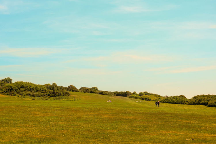 Beauty In Nature Blue Sky Day East Hill Country Park Field Grass Green Color Growth Landscape Nature Outdoors Real People Scenics Sky Slope Tranquil Scene Tranquility Tree