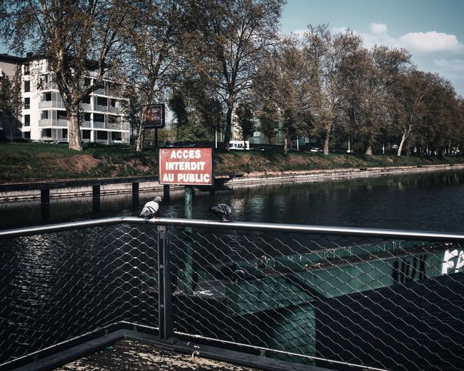 Urban Perspectives Street Photography Birds The Devil's In The Detail Waterfront City Tree Sign Communication Water Railing Text Nature Architecture No People Day Plant Built Structure Western Script Barrier Lake Fence Building Exterior Outdoors Urban Photography The Street Photographer - 2019 EyeEm Awards