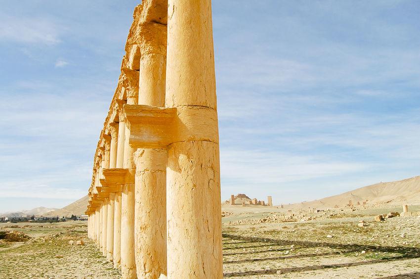 Palmyra Ruins - Syria Palmyra Ruins Syria  Ancient Civilization Archaeology Built Structure Old Ruin Palmyra Roman Ruin
