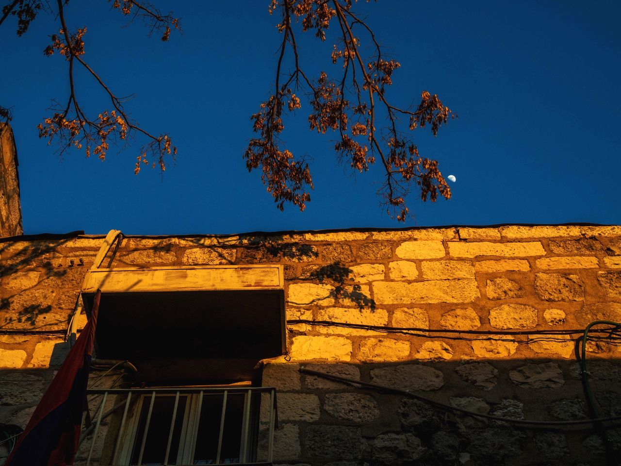 architecture, built structure, building exterior, tree, low angle view, outdoors, no people, branch, day, growth, clear sky, blue, nature, sky, beauty in nature, tiled roof
