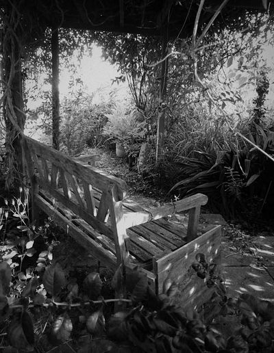 My Favorite Place Place To Think Place To Relax❤ Peaceful Nature Outdoors Tranquil Scene Beauty In Nature No People Solitude Tranquility Woodenseat Overgrown Places Overgrown Sunlight Shadows