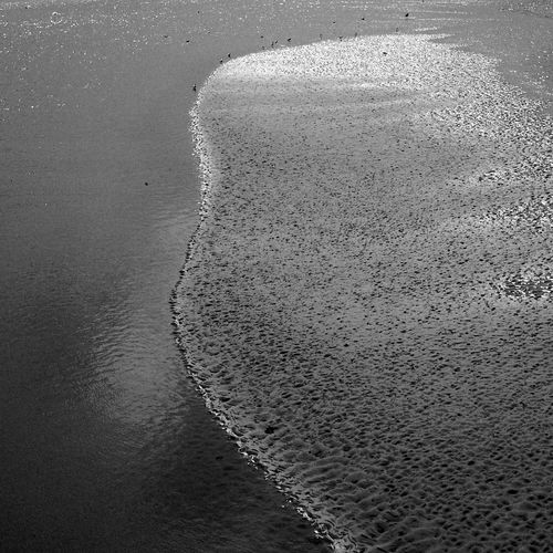 The Sandbar Water No People Nature Sea Beach Day Land Beauty In Nature Outdoors Wet Sand Pattern Tranquility Blackandwhite Black And White