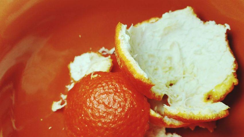 Nature Orange Orange Color Orange Is The New Black