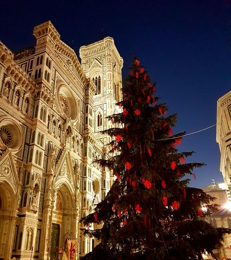 Night Illuminated Outdoors Travel Destinations Christmas Decoration Tree Christmas Tree Skyscraper Piu Bella Notte Notte Sotto Le Stelle Firenze Natale  Santa Maria Del Fiore Natale  EyeEm Best Shots Feel The Journey Samsung Galaxy S7 Edge Feel The Journey, Low Angle View 2016😍 Natale  Xmas Trees Xmas🎄